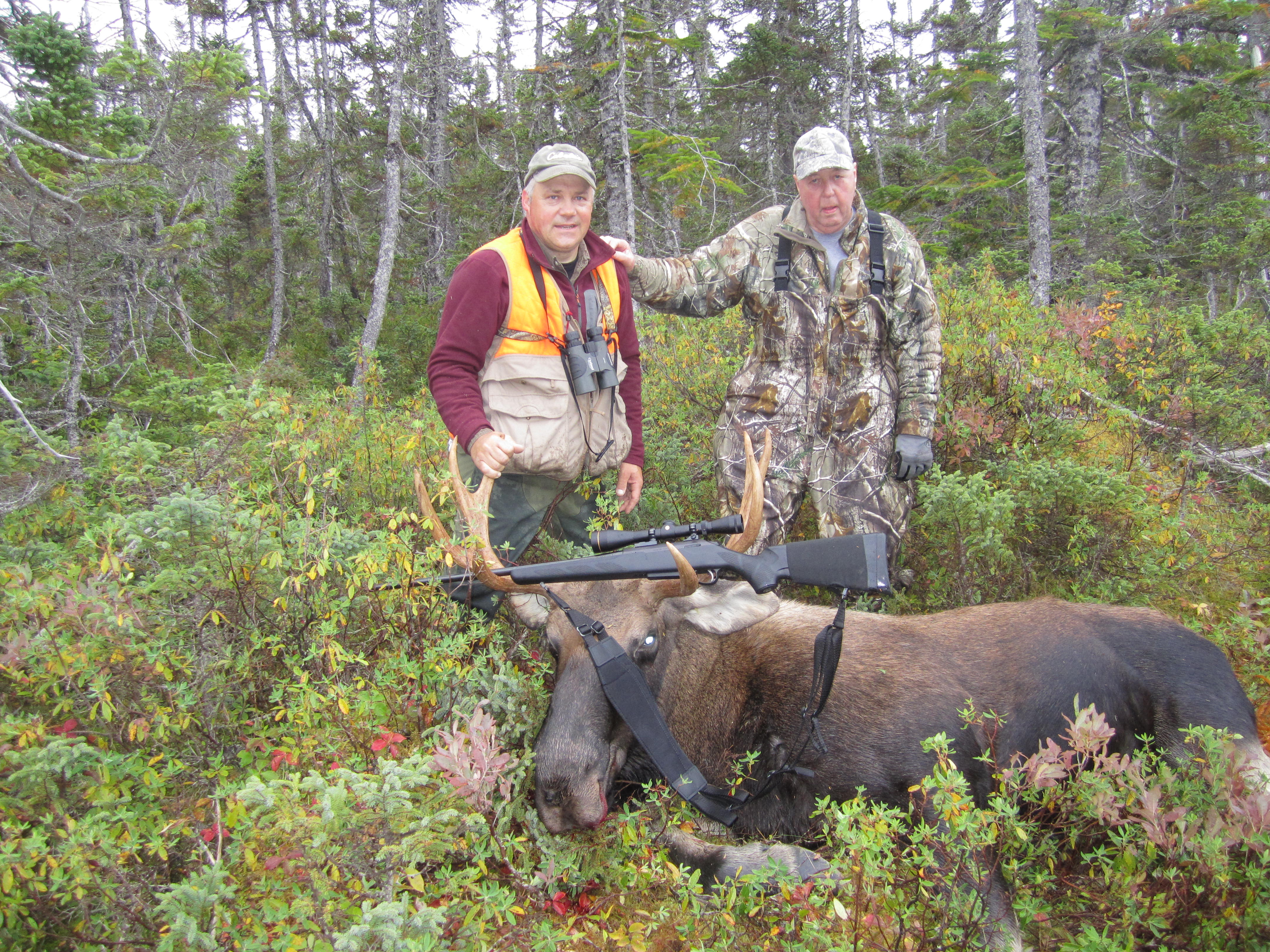Newfoundland Hunters Blog Spruce Pond Hunting Page