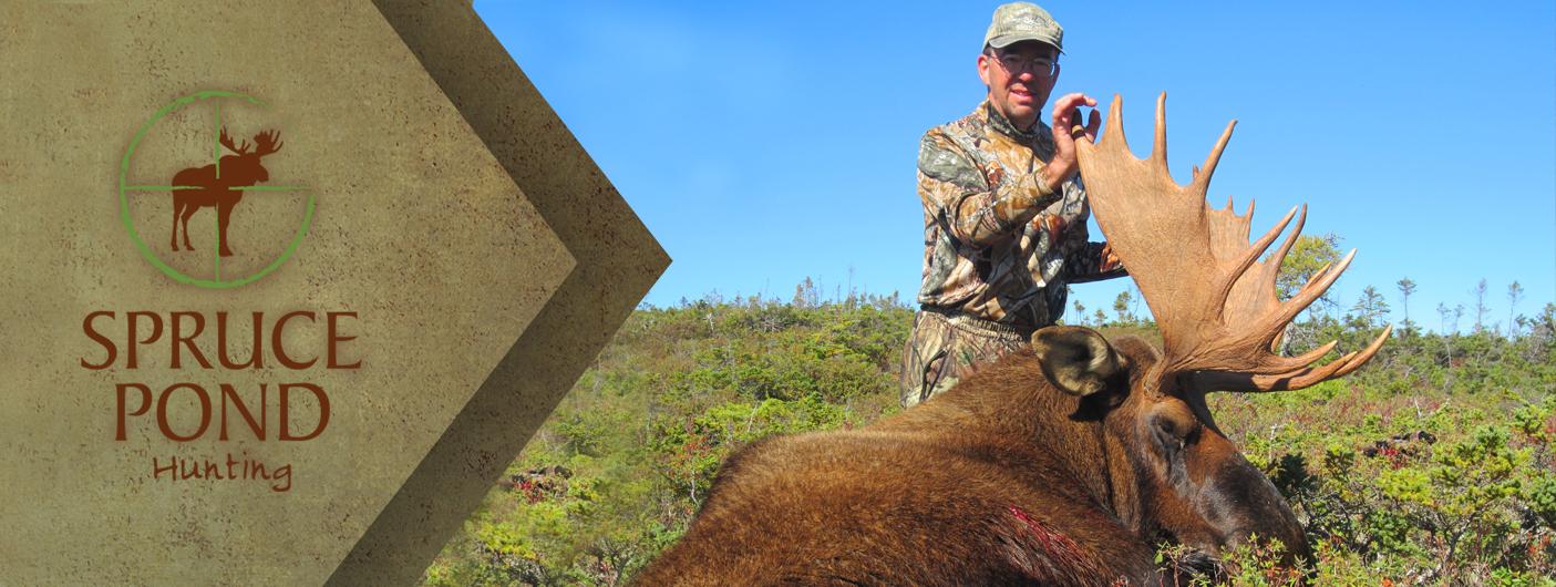 Hunting In Newfoundland Spruce Pond Hunting